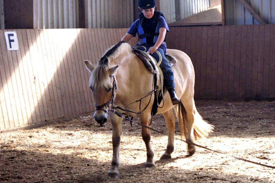 Ein Schüler reitet auf einem Pony.