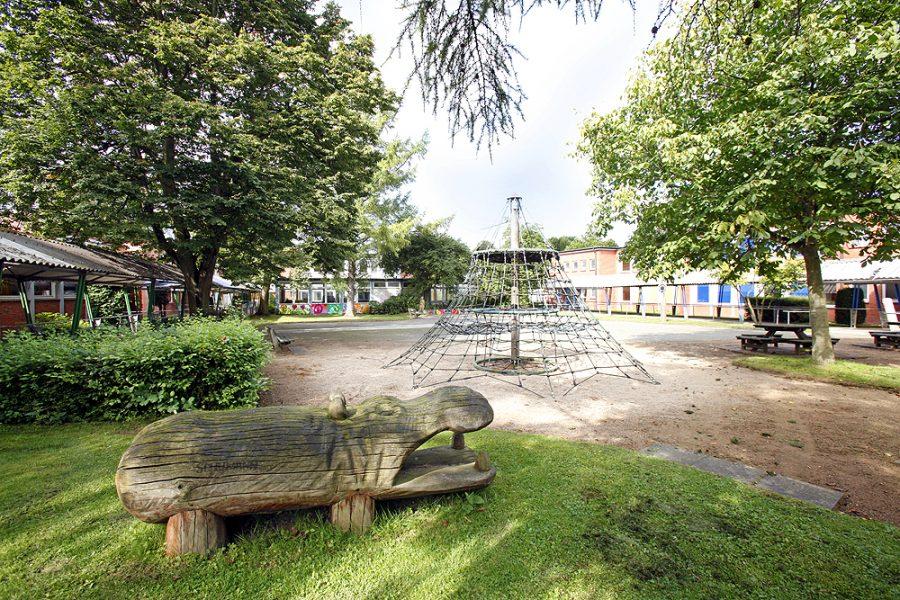 Schulhof mit Klettergerüst und mehreren großen Bäumen